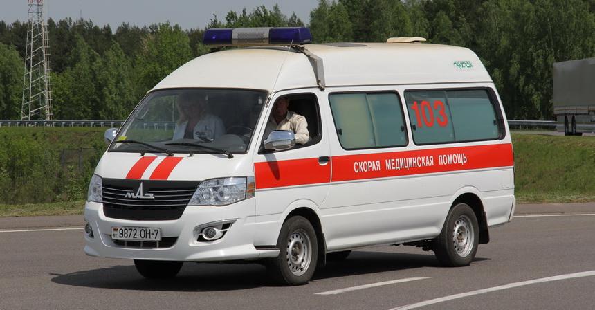 В дальнейшем «МикроМАЗ» получил новое имя Ника, а один из МАЗ-182 переоборудовали в скорую помощь